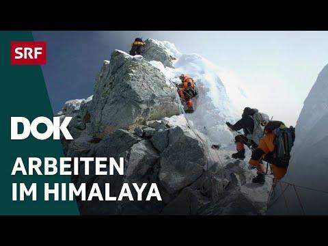 Sherpas – Die