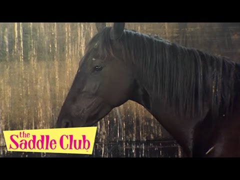 The Saddle Club Movie - Storm At Pine Hollow | HD Full Movie