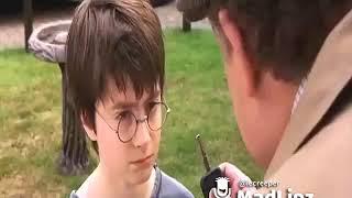 Harry Potter und das gestohlene Auto | Madlipz #001