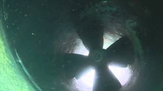 San Diego Hull Cleaning (Dockside Divers)