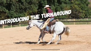 How to Introduce your horse to the Turnaround