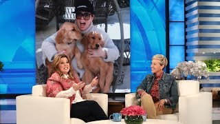 melissa mccarthys new dogs are pretty but not that smart