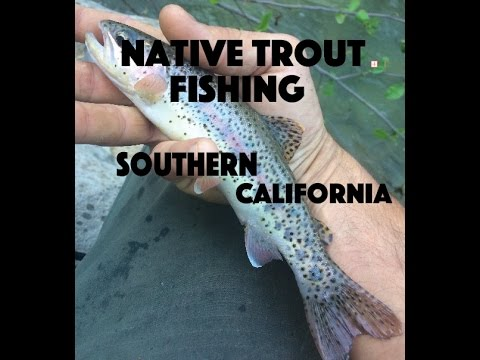 Native trout fishing southern california youtube for Trout fishing southern california