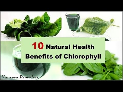 Top 10 Natural Health Benefits of Chlorophyll