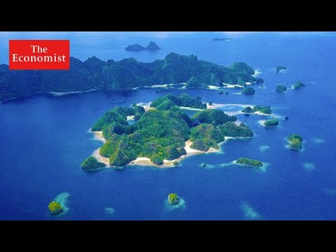 Can eco-tourism help save the ocean? | The Economist