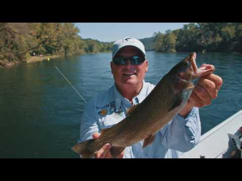 Secrets To Fly Fishing On Lake Taneycomo