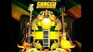Shaggy - Trouble Under Your Roof