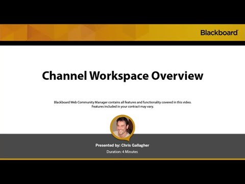 Channel Workspace Overview in Blackboard Web Community Manager