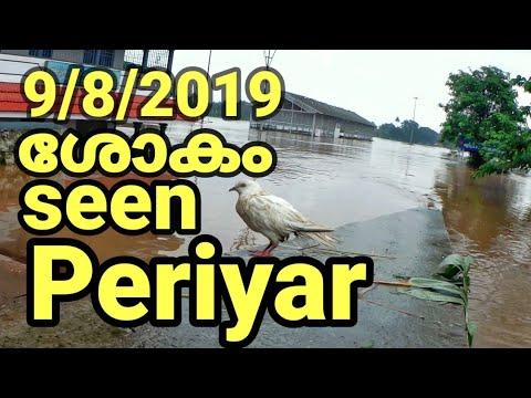  periyar water Ievel increase 2019 aluva water level periyar dangerlevel #aluva _manappuram