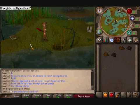 Runescape-Swamp Lizard Hunting Guide
