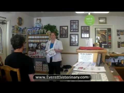 Everett EZ Wellness Seminar: Health Nutrition Shiny Coat