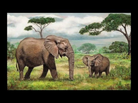 Mother and Baby Elephant Head