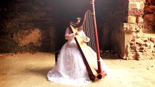 teri-galiyan-by-sound-spirit-international-harpist