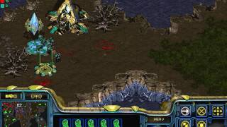 starcraft risk  game 5 !