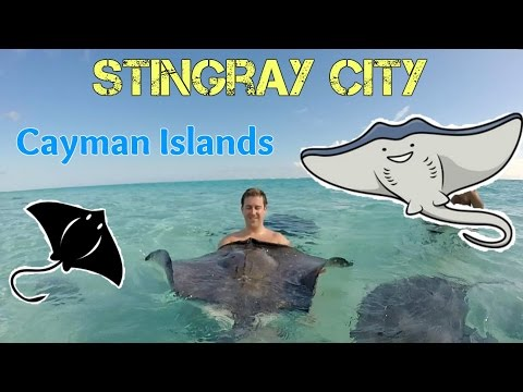2016 Stingray City, Private Charter [GoPro]