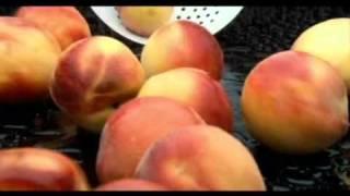 Fresher Peach Juice Advertisement