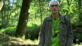 video uit Literaire wandeling met Luc Boonen