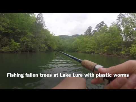 Fishing Lake Lure