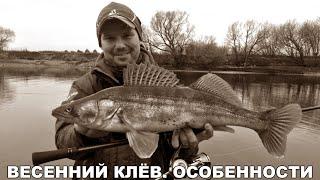 Спиннинг ранней весной Рыбалка перед запретом