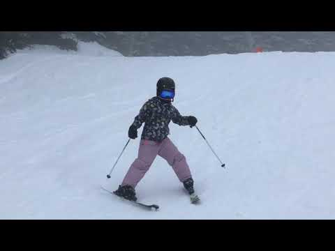 BC Family Day Skiing 2018