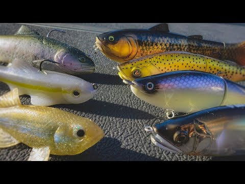Spring Swimbait Fishing:  Everything You Need To Know