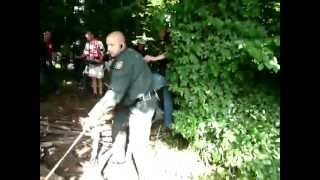 Polizeihund beißt Fan von Fortuna Köln