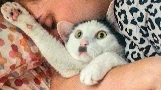 😂 Awesome Funny 🐶 Dogs And Cats 😸From Tik Tok -  Funniest And Cute Animals Video