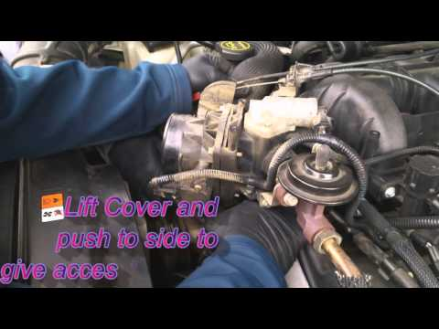 also C A B as well F Z C as well Hqdefault also Maxresdefault. on 1995 ford ranger timing belt