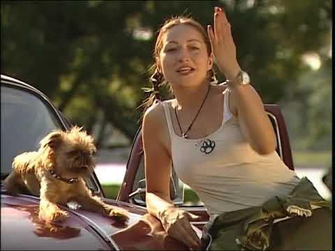 """TEST.TV. """"ХотДог"""". Первая в мире говорящая собака!!! Режиссер Анна Пармас!!!"""