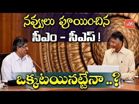 AP News video watch HD videos online without registration