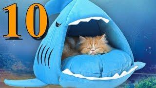 דברים שימושיים לחתולים | 10 מוצרים מדהימים וטובים מאתר אלי אקספרס | Aliexpress Cat's Products
