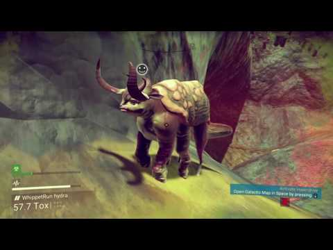 Travelling in space whilst feeding silly creatures, come chill with WhippetRun