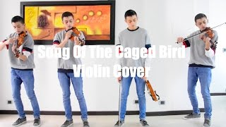 Song Of The Caged Bird - Lindsey Stirling (acoustic violin cover)