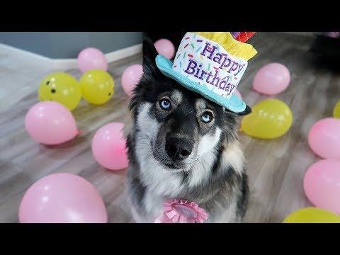 Kakoa's Surprise 1st Birthday Party!