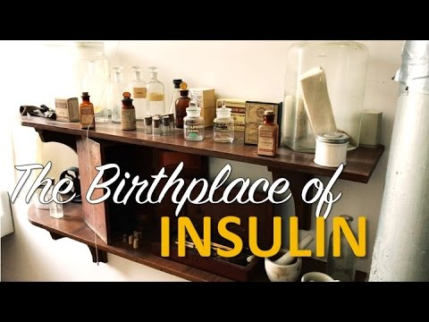 VISITING THE BIRTHPLACE OF INSULIN! // type 1 diabetes day in the life