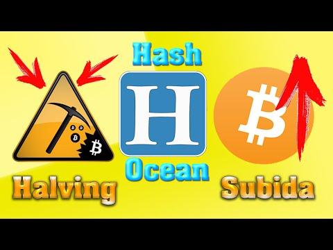Halving De Bitcoin, Hash Ocean Y Subida Del Bitcoin