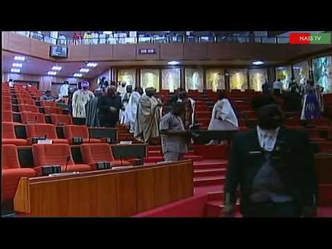 Video: Thugs Storm Senate Chamber, run away with the Mace