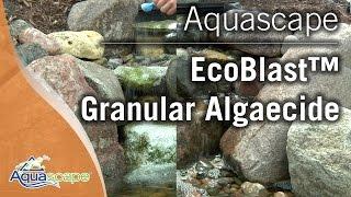 Eliminate Algae in Your Pond with Aquascape EcoBlast™ Granular Algaecide