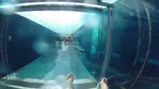 GoPro Video; Shark Attack Waterslide, Aquaventure Waterpark, Atlantis, Dubai.
