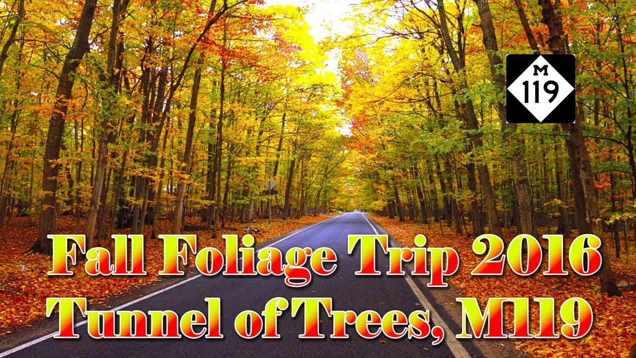 fall foliage trip 2016 on m119 tunnel of trees cross village