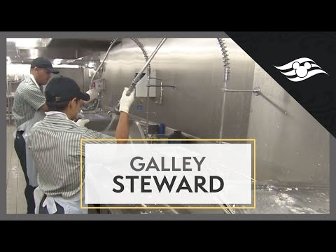 Galley Steward - Disney Cruise Line Jobs - YouTube