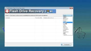 Flash Drive Recovery Pro 2.0-Multilang+portable
