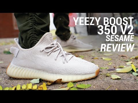 Adidas Yeezy Boost 350 V2 Sesame Review & On Feet