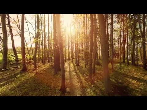 Filmación entre los árboles con drones   Cyclope Drone (4K Full HD) #UAV ✅