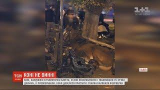 Влада Львова взялася перевіряти компанії які возять туристів на каретах з кіньми
