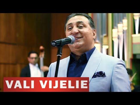 VALI VIJELIE - De dorul tau (VIDEO OFICIAL 2016)