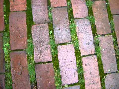 Exceptionnel Moss U0026 Brick
