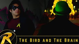 Robin: The Bird and The Brain (Short Film)