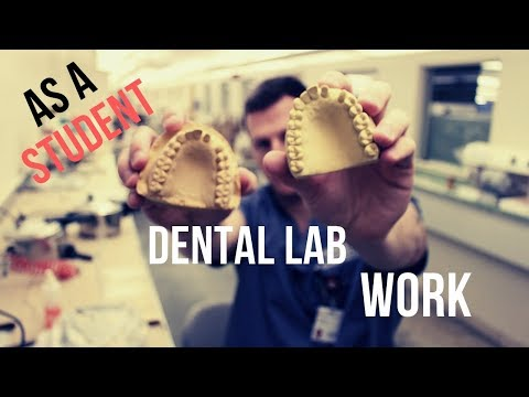 What DENTAL LAB WORK is Like in Dental School || Impressions and Duplicating Casts