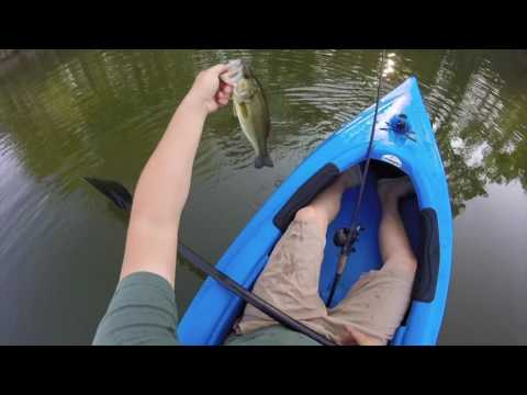 Early Fall Bass Fishing - Central Illinois Angling